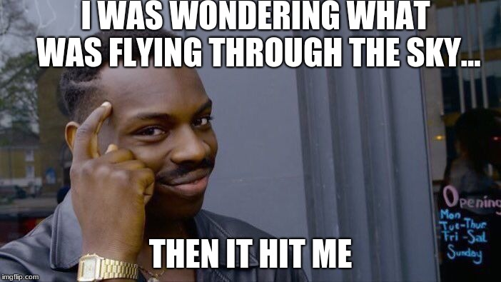smart queen | I WAS WONDERING WHAT WAS FLYING THROUGH THE SKY... THEN IT HIT ME | image tagged in memes,roll safe think about it | made w/ Imgflip meme maker