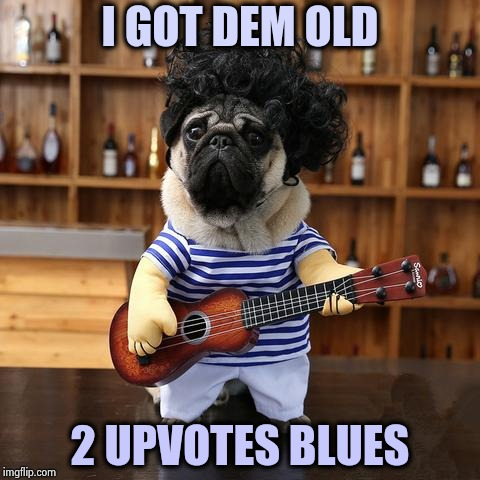 IMGFLIP doesn't know which to list first | I GOT DEM OLD 2 UPVOTES BLUES | image tagged in ukelele pug,upvotes,one does not simply,ignore,everyone | made w/ Imgflip meme maker