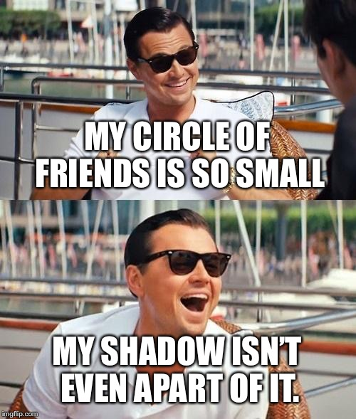 Leonardo Dicaprio Wolf Of Wall Street Meme | MY CIRCLE OF FRIENDS IS SO SMALL MY SHADOW ISN'T EVEN APART OF IT. | image tagged in memes,leonardo dicaprio wolf of wall street | made w/ Imgflip meme maker