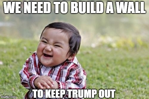 Evil Toddler Meme | WE NEED TO BUILD A WALL TO KEEP TRUMP OUT | image tagged in memes,evil toddler | made w/ Imgflip meme maker