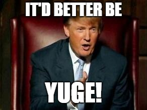 Donald Trump | IT'D BETTER BE YUGE! | image tagged in donald trump | made w/ Imgflip meme maker