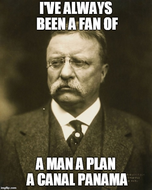 teddy roosevelt | I'VE ALWAYS BEEN A FAN OF A MAN A PLAN A CANAL PANAMA | image tagged in teddy roosevelt | made w/ Imgflip meme maker