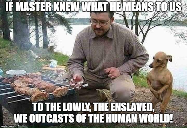 Dobby is a free dog now! | IF MASTER KNEW WHAT HE MEANS TO US TO THE LOWLY, THE ENSLAVED, WE OUTCASTS OF THE HUMAN WORLD! | image tagged in dobby,harry potter,parody | made w/ Imgflip meme maker