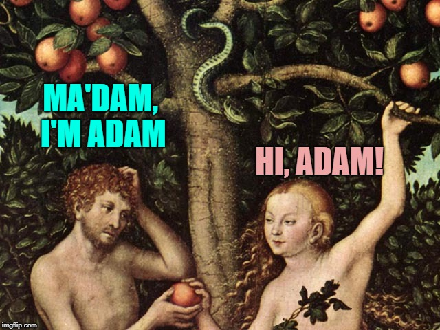 adam and eve | MA'DAM, I'M ADAM HI, ADAM! | image tagged in adam and eve | made w/ Imgflip meme maker