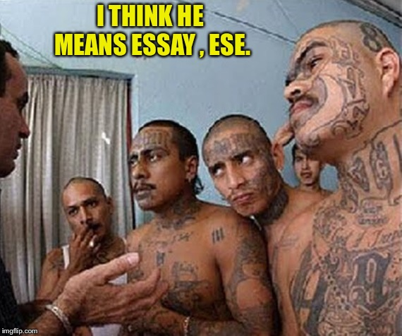 I THINK HE MEANS ESSAY , ESE. | made w/ Imgflip meme maker
