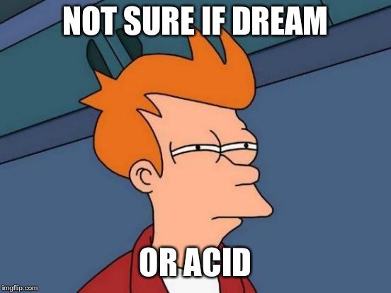 Futurama Fry Meme | NOT SURE IF DREAM OR ACID | image tagged in memes,futurama fry | made w/ Imgflip meme maker