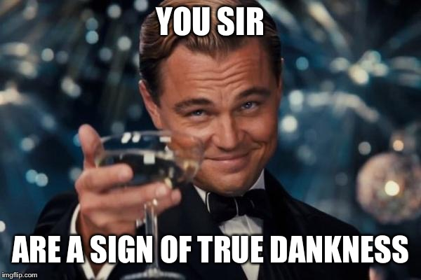 Leonardo Dicaprio Cheers Meme | YOU SIR ARE A SIGN OF TRUE DANKNESS | image tagged in memes,leonardo dicaprio cheers | made w/ Imgflip meme maker