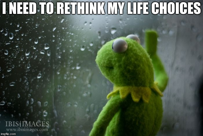 kermit window | I NEED TO RETHINK MY LIFE CHOICES | image tagged in kermit window | made w/ Imgflip meme maker