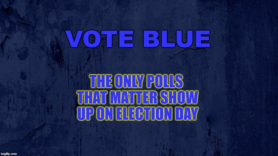 the only polls that matter show up on election day | VOTE BLUE THE ONLY POLLS THAT MATTER SHOW UP ON ELECTION DAY | image tagged in election | made w/ Imgflip meme maker