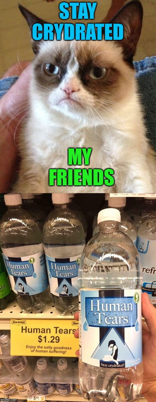 Cheers to the tears! -Grumpy  | STAY CRYDRATED MY FRIENDS | image tagged in grumpy cat,tears,memes,funny | made w/ Imgflip meme maker