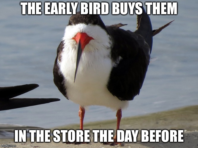 Even Less Popular Opinion Bird | THE EARLY BIRD BUYS THEM IN THE STORE THE DAY BEFORE | image tagged in even less popular opinion bird | made w/ Imgflip meme maker