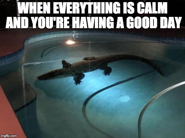 WHEN EVERYTHING IS CALM AND YOU'RE HAVING A GOOD DAY | image tagged in anxiety,drama,depression,mental health,good day | made w/ Imgflip meme maker
