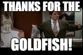 THANKS FOR THE GOLDFISH! | made w/ Imgflip meme maker