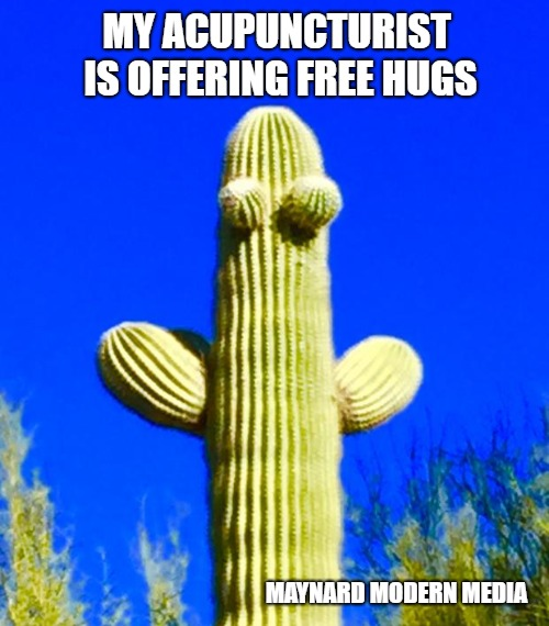 Huggy Cactus  | MY ACUPUNCTURIST IS OFFERING FREE HUGS MAYNARD MODERN MEDIA | image tagged in huggy cactus | made w/ Imgflip meme maker