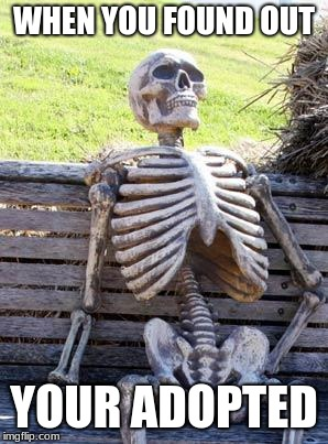 ADOPTION  | WHEN YOU FOUND OUT YOUR ADOPTED | image tagged in memes,waiting skeleton | made w/ Imgflip meme maker