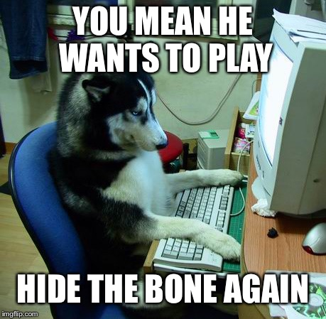 I Have No Idea What I Am Doing Meme | YOU MEAN HE WANTS TO PLAY HIDE THE BONE AGAIN | image tagged in memes,i have no idea what i am doing | made w/ Imgflip meme maker