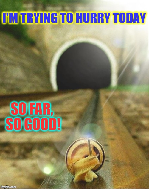 Doing the Best You Can is Not without Danger | I'M TRYING TO HURRY TODAY SO FAR, SO GOOD! | image tagged in vince vance,snail,railroad track,getting older,going slow,got your back | made w/ Imgflip meme maker