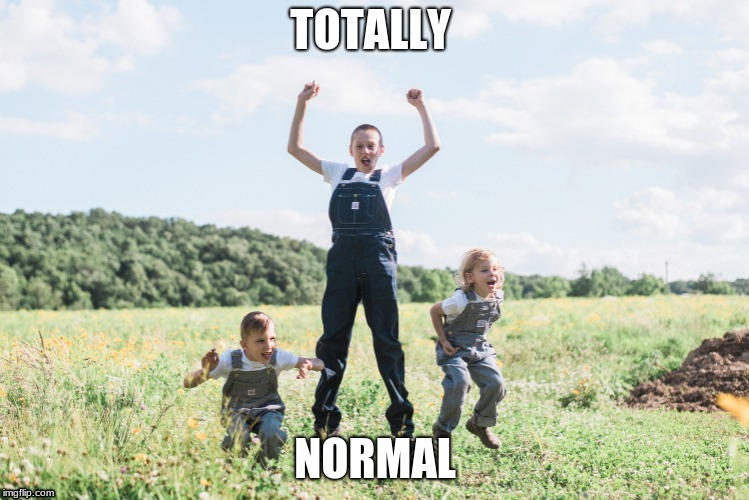 TOTALLY NORMAL | image tagged in memes | made w/ Imgflip meme maker