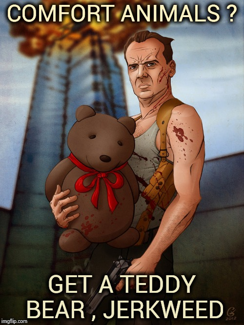 Maybe if it was a flying squirrel | COMFORT ANIMALS ? GET A TEDDY BEAR , JERKWEED | image tagged in die hard teddy bear john mcclain,whiners,grow up,comfort,horse,that's just silly cat | made w/ Imgflip meme maker