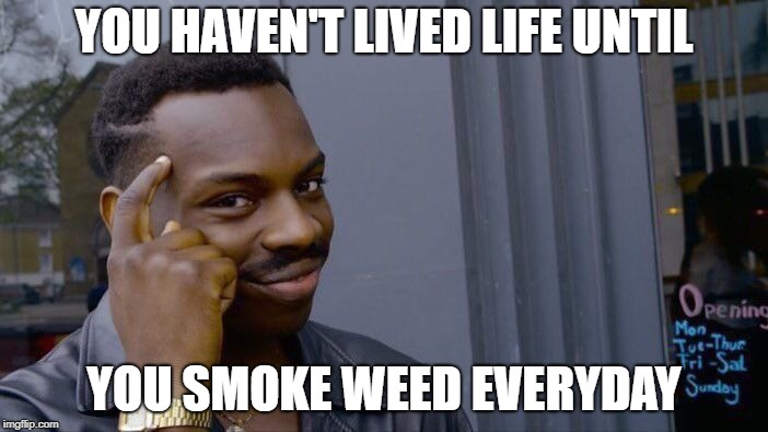 Roll Safe Think About It Meme | YOU HAVEN'T LIVED LIFE UNTIL YOU SMOKE WEED EVERYDAY | image tagged in memes,roll safe think about it | made w/ Imgflip meme maker