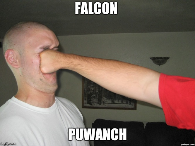 Face punch | FALCON PUWANCH | image tagged in face punch | made w/ Imgflip meme maker