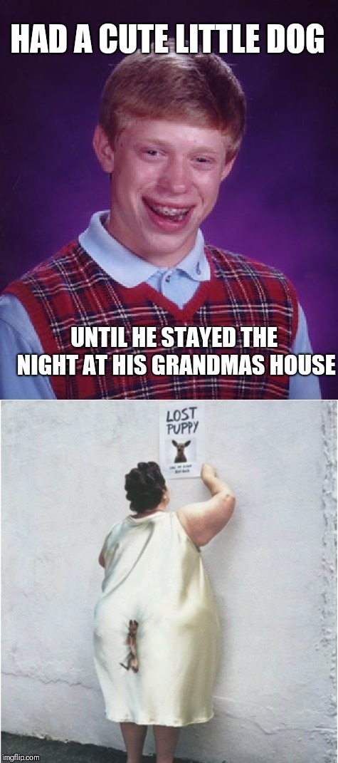 Bad Luck Brian | HAD A CUTE LITTLE DOG UNTIL HE STAYED THE NIGHT AT HIS GRANDMAS HOUSE | image tagged in memes,funny,bad luck brian,pets,dogs | made w/ Imgflip meme maker