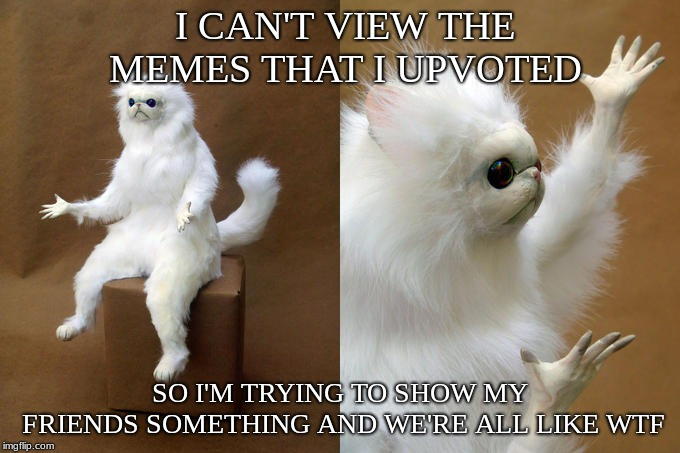 Persian Cat Room Guardian Meme | I CAN'T VIEW THE MEMES THAT I UPVOTED SO I'M TRYING TO SHOW MY FRIENDS SOMETHING AND WE'RE ALL LIKE WTF | image tagged in memes,persian cat room guardian | made w/ Imgflip meme maker