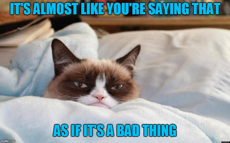 grumpy cat bed | IT'S ALMOST LIKE YOU'RE SAYING THAT AS IF IT'S A BAD THING | image tagged in grumpy cat bed | made w/ Imgflip meme maker