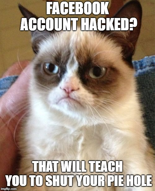 Grumpy Cat Meme | FACEBOOK ACCOUNT HACKED? THAT WILL TEACH YOU TO SHUT YOUR PIE HOLE | image tagged in memes,grumpy cat | made w/ Imgflip meme maker