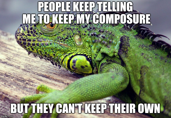 PEOPLE KEEP TELLING ME TO KEEP MY COMPOSURE BUT THEY CAN'T KEEP THEIR OWN | image tagged in it annoys me when | made w/ Imgflip meme maker