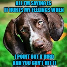 Think of your hunting dog's feelings... Learn to shoot...and save money on shells!!! | ALL I'M SAYING IS IT HURTS MY FEELINGS WHEN I POINT OUT A BIRD AND YOU CAN'T HIT IT | image tagged in hunting dog,memes,hunting,funny,dogs,animals | made w/ Imgflip meme maker
