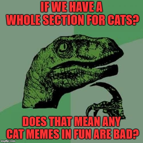 -sigh- | IF WE HAVE A WHOLE SECTION FOR CATS? DOES THAT MEAN ANY CAT MEMES IN FUN ARE BAD? | image tagged in memes,philosoraptor | made w/ Imgflip meme maker