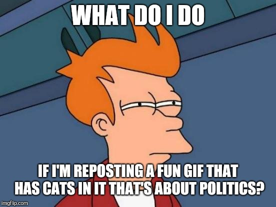 A question for the ages! | WHAT DO I DO IF I'M REPOSTING A FUN GIF THAT HAS CATS IN IT THAT'S ABOUT POLITICS? | image tagged in memes,futurama fry,what if | made w/ Imgflip meme maker