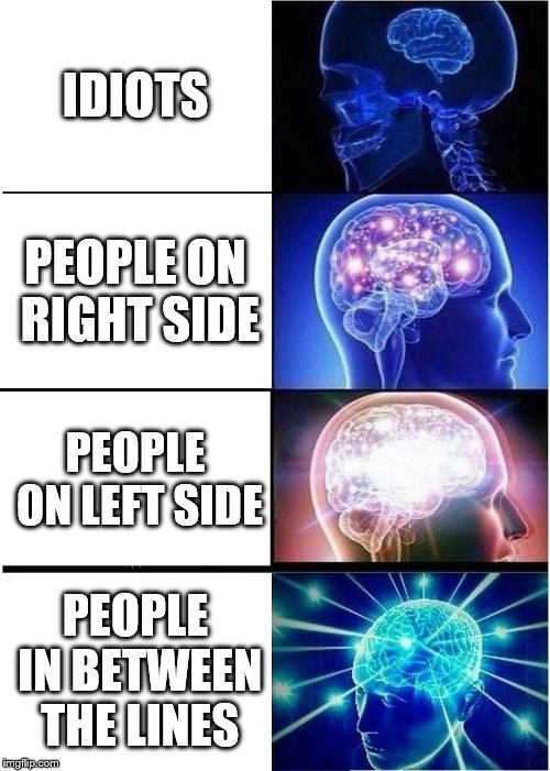 Expanding Brain Meme | IDIOTS PEOPLE ON RIGHT SIDE PEOPLE ON LEFT SIDE PEOPLE IN BETWEEN THE LINES | image tagged in memes,expanding brain | made w/ Imgflip meme maker