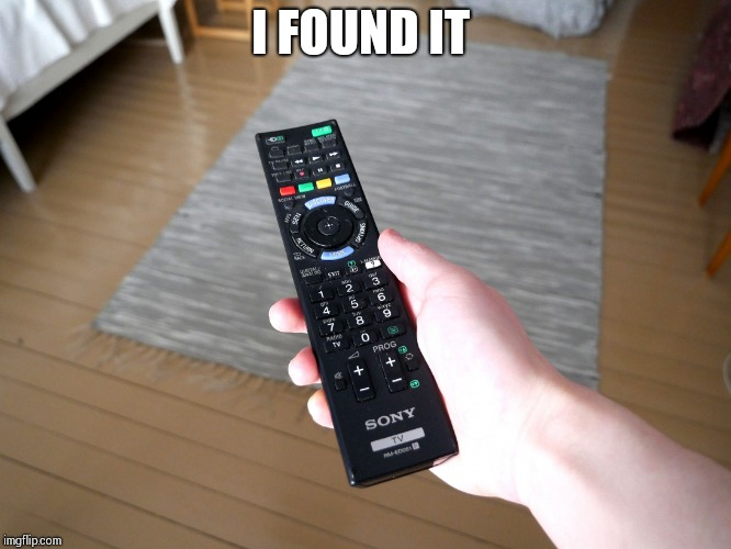 remote control | I FOUND IT | image tagged in remote control | made w/ Imgflip meme maker