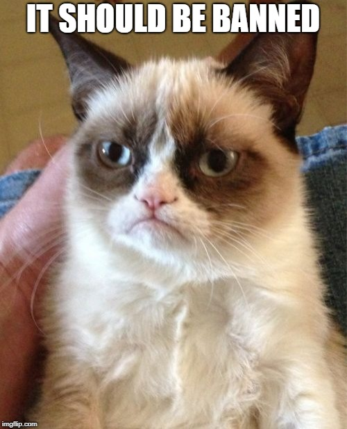 Grumpy Cat Meme | IT SHOULD BE BANNED | image tagged in memes,grumpy cat | made w/ Imgflip meme maker