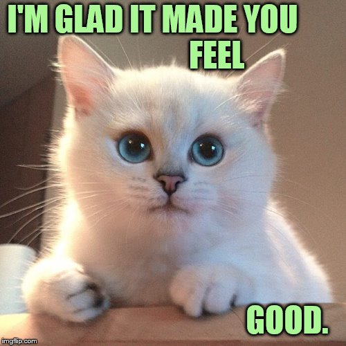 I'M GLAD IT MADE YOU                     FEEL GOOD. | made w/ Imgflip meme maker