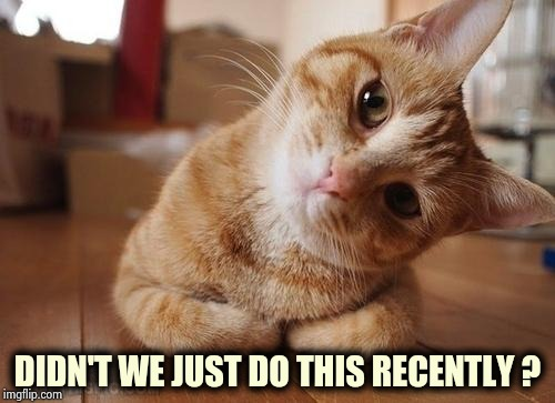 Curious Question Cat | DIDN'T WE JUST DO THIS RECENTLY ? | image tagged in curious question cat | made w/ Imgflip meme maker