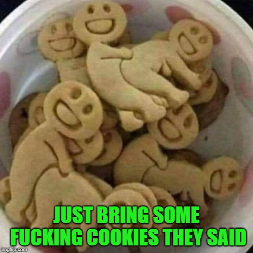 i did what you said | JUST BRING SOME F**KING COOKIES THEY SAID | image tagged in cookies,funny | made w/ Imgflip meme maker