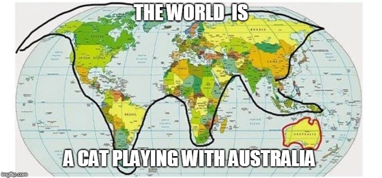 Cat-ography | THE WORLD  IS A CAT PLAYING WITH AUSTRALIA | image tagged in meme,the world,flat earth,geography | made w/ Imgflip meme maker