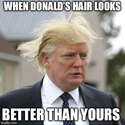Donald Trump | WHEN DONALD'S HAIR LOOKS BETTER THAN YOURS | image tagged in donald trump | made w/ Imgflip meme maker