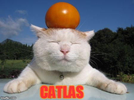 CATLAS | made w/ Imgflip meme maker