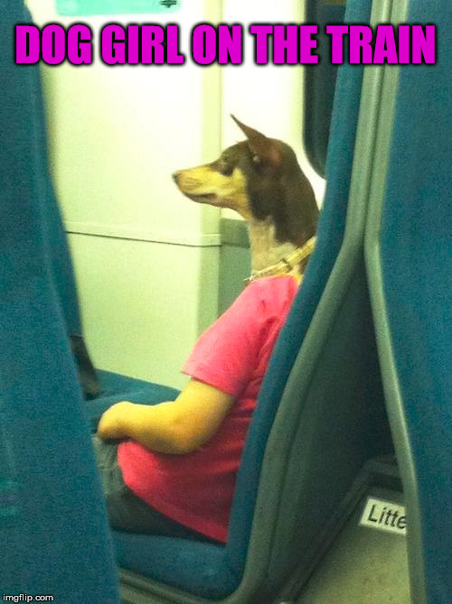 Must be experimenting again on hybrid humans | DOG GIRL ON THE TRAIN | image tagged in memes,hybrid,experiment,dog,girl,funny | made w/ Imgflip meme maker