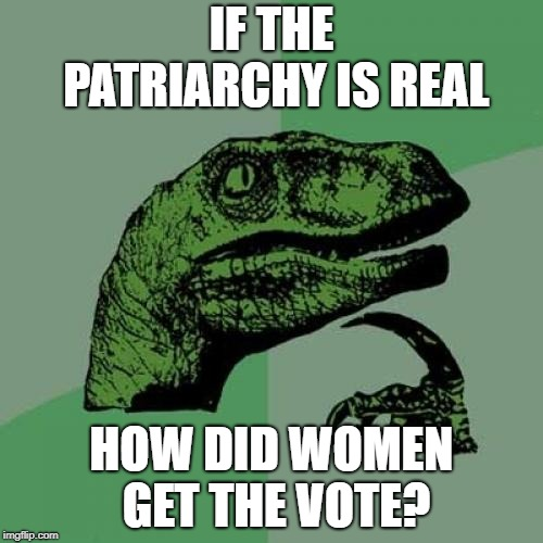 Philosoraptor Meme | IF THE PATRIARCHY IS REAL HOW DID WOMEN GET THE VOTE? | image tagged in memes,philosoraptor | made w/ Imgflip meme maker