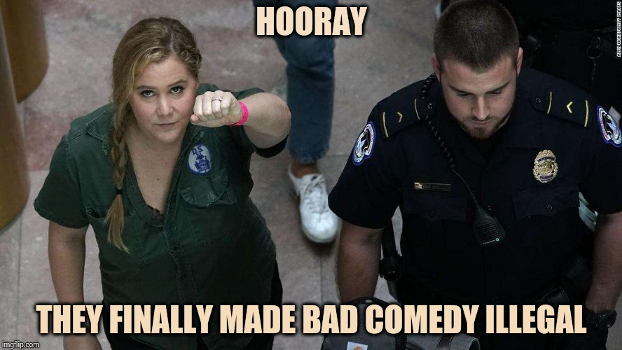 Now do something about those annoying Pop Stars | HOORAY THEY FINALLY MADE BAD COMEDY ILLEGAL | image tagged in amy schumer is not funny,bad joke,not funny,go away,prison bars,in the future | made w/ Imgflip meme maker