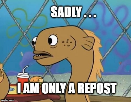 Sadly I Am Only An Eel Meme |  SADLY . . . I AM ONLY A REPOST | image tagged in memes,sadly i am only an eel,repost,reposting my own,meanwhile on imgflip | made w/ Imgflip meme maker