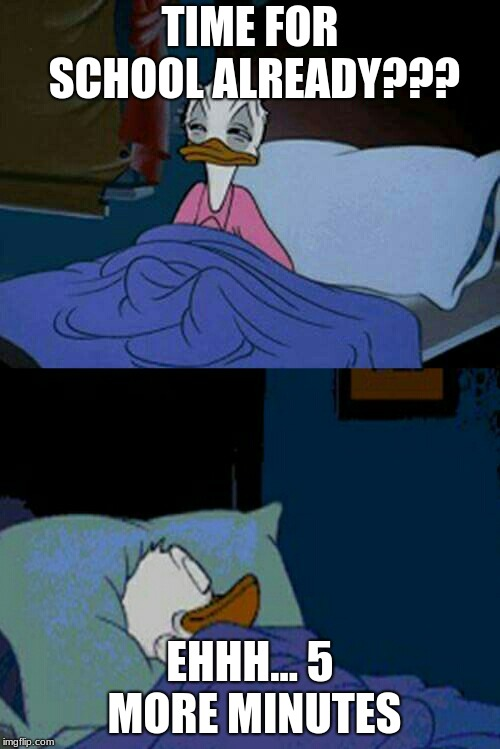 sleepy donald duck in bed | TIME FOR SCHOOL ALREADY??? EHHH... 5 MORE MINUTES | image tagged in sleepy donald duck in bed | made w/ Imgflip meme maker