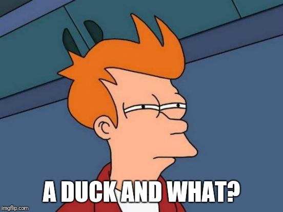 Futurama Fry Meme | A DUCK AND WHAT? | image tagged in memes,futurama fry | made w/ Imgflip meme maker