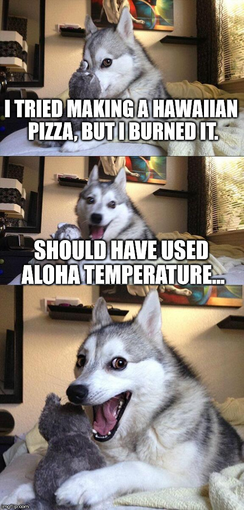 Bad Pun Dog Meme | I TRIED MAKING A HAWAIIAN PIZZA, BUT I BURNED IT. SHOULD HAVE USED ALOHA TEMPERATURE... | image tagged in memes,bad pun dog | made w/ Imgflip meme maker