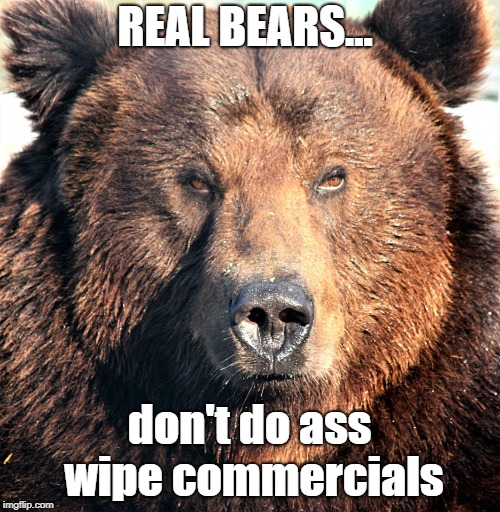 Grin And Bear It | REAL BEARS... don't do ass wipe commercials | image tagged in bears,toilet paper commercials | made w/ Imgflip meme maker